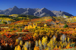 Best Places To See Fall Colors Near Dallas 
