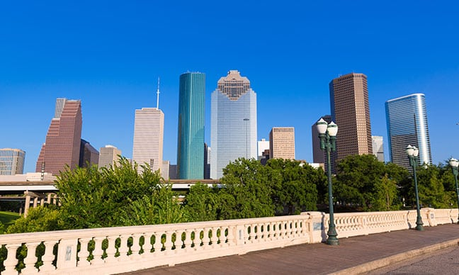 What_trees_grow_best_in_North_Texas_