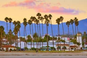 Best Santa Barbara Flowering Trees