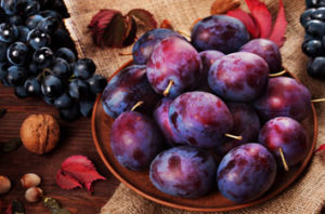 Santa Rosa Plum Tree Guide And Information